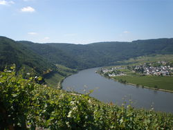 Landscape of the Mosel